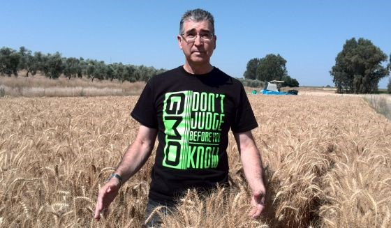 Franciso Barro, Trigo sin gluten