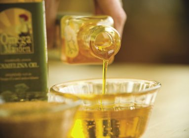 aceite transgénico omega 3