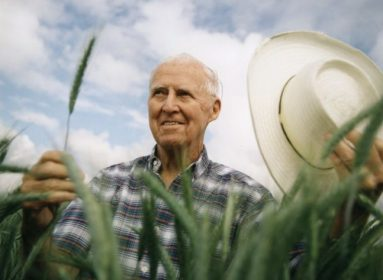 mejoramiento genético de cultivos
