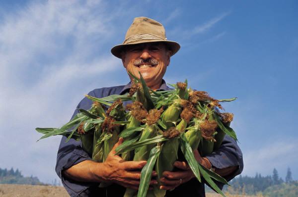 agricultor feliz transgénicos