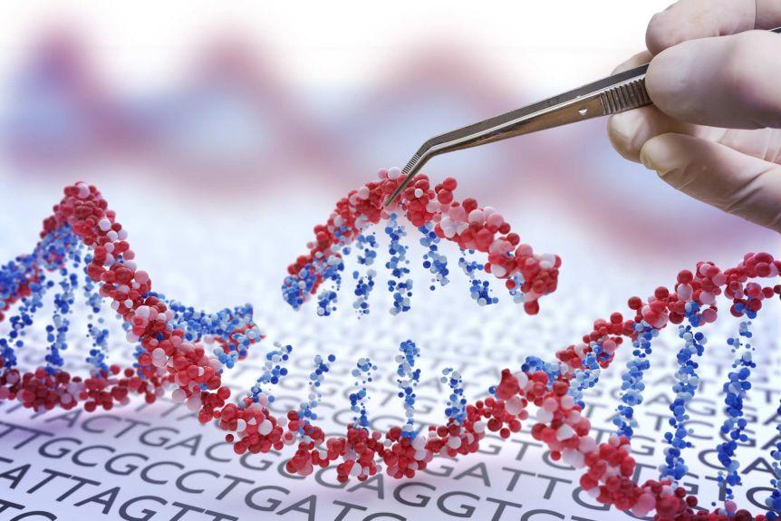 CRISPR prime editing