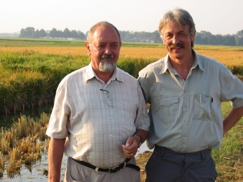 Ingo Potrykus y Peter Beyer arroz dorado