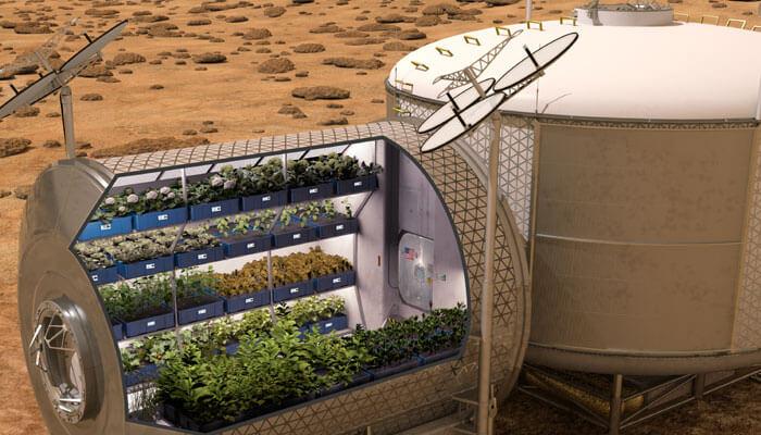 cultivo en el espacio